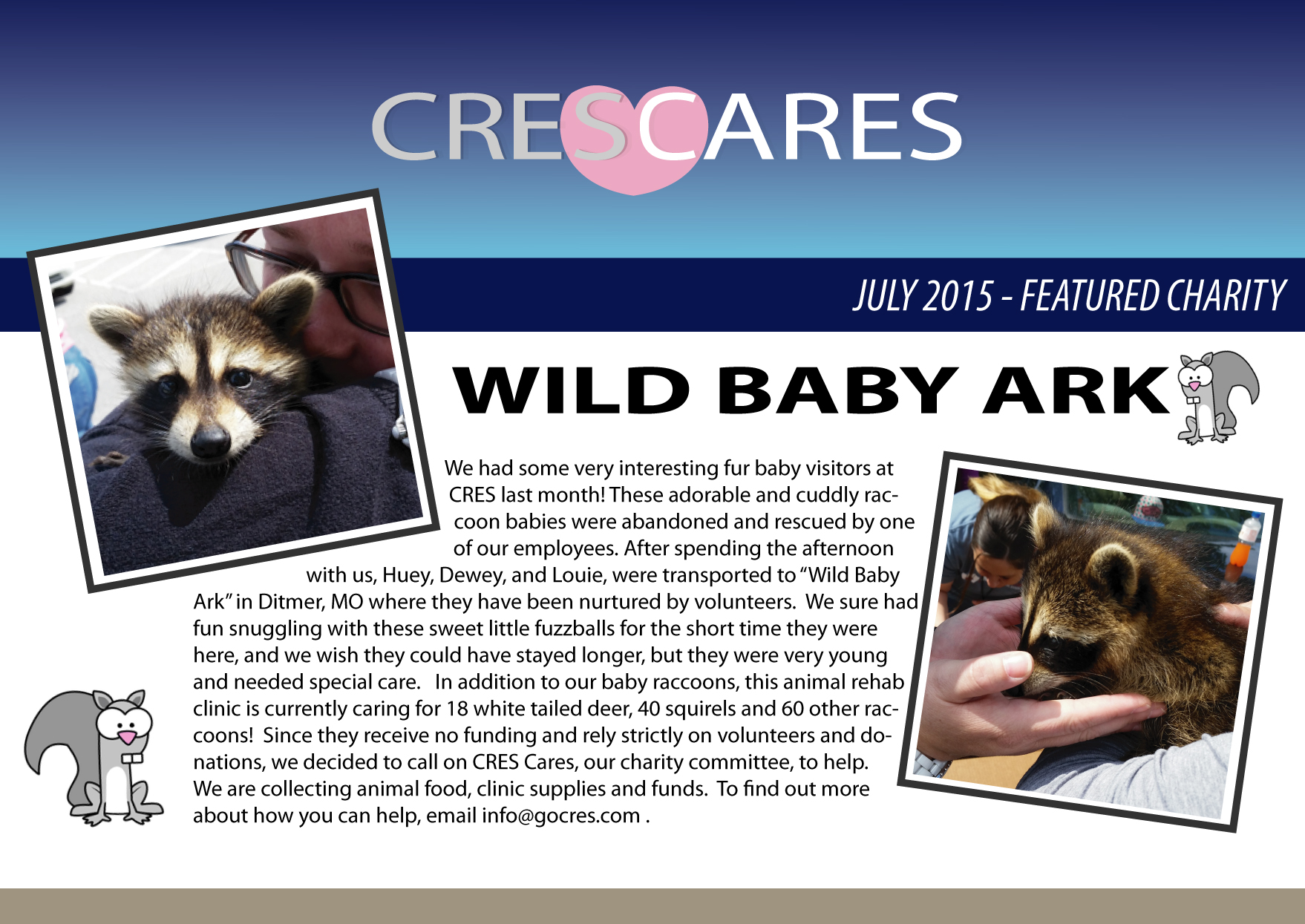 Raccoon-Promotion-Featured-Charity-July-2015